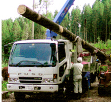 足達木材の作業現場