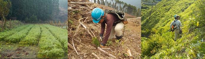 株式会社足達木材